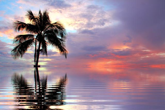 Sunset Sea Nature  Free photo on Pixabay