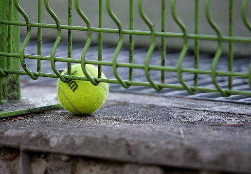 Tennis, Exercise, Hobby, Sport, Ball