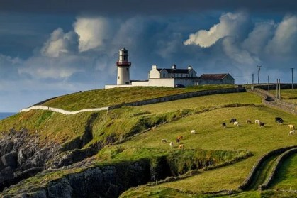 Lighthouse, Ireland, Galley Head, View