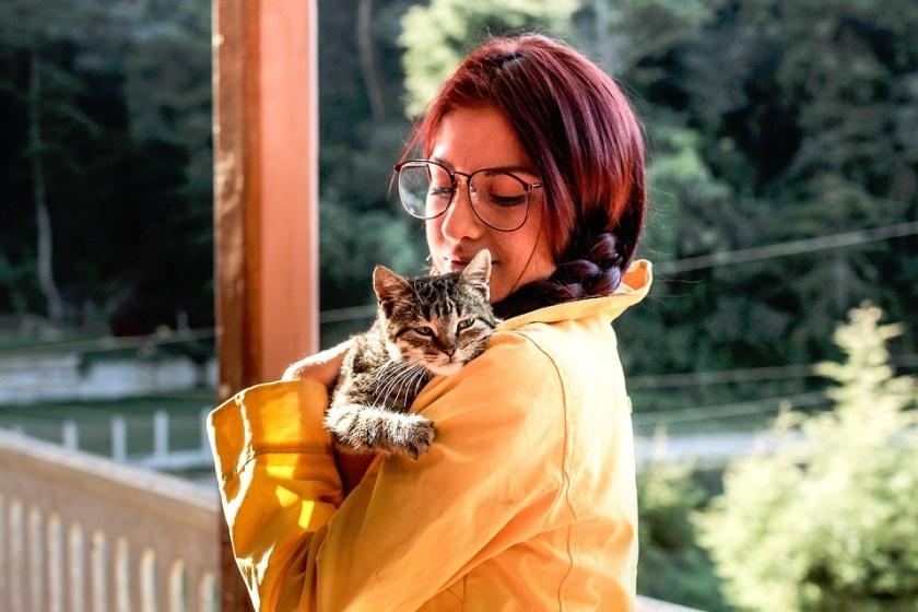 Personas, Niña, Dama, Mujer, Animales, Gato, Mascota