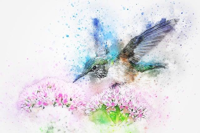 Oiseau Des Animaux Fleurs  Image gratuite sur Pixabay