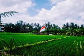 Image Result For Kuta Bali Vacation
