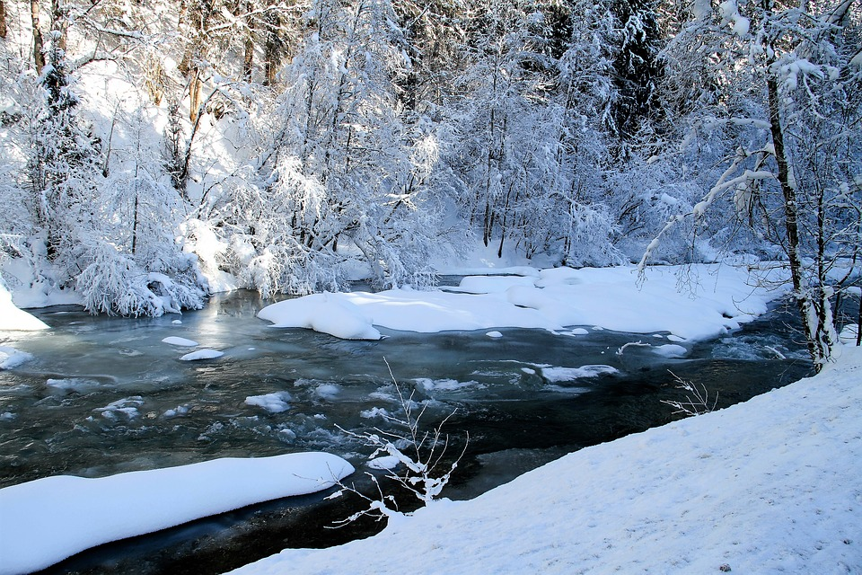 Download Snow Fall Animated Wallpaper Winter River Trees 183 Free Photo On Pixabay