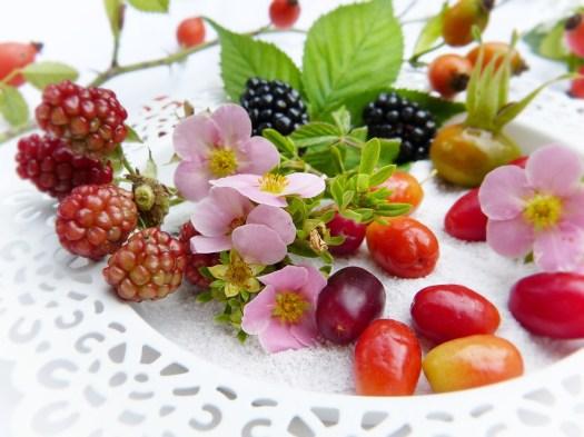 Frutti Di Bosco, Fresco, Frutta, Bio, Autunno, Maturo
