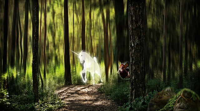 Fall Season Desktop Wallpaper Elf Forest Unicorn Fantasy 183 Free Photo On Pixabay