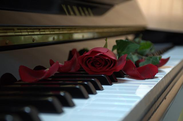 Broken Love Wallpaper With Quotes Piano Rose Music 183 Free Photo On Pixabay