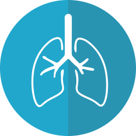Lungs, Lung Icon, Respiration, Anatomical, Pulmonary