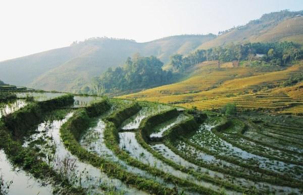 landscapes of vietnam showing