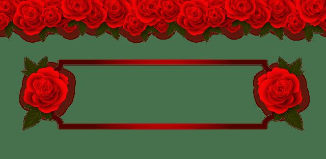 Rose Flowers Plate Free Image On Pixabay
