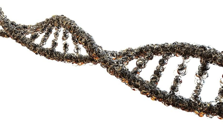 痛風, 生物学, Dna鎖, 科学, 遺伝学, 酸Deoksyrybonukleinowy, 分子生物学