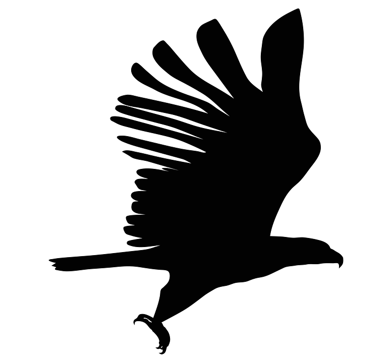 Bald Eagle Head Silhouette