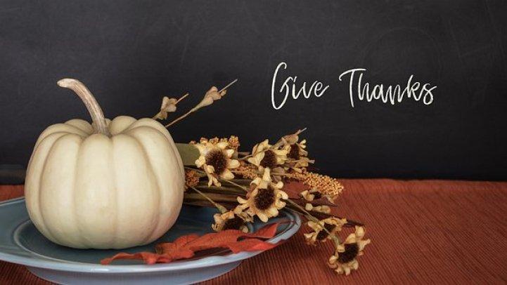 Thanksgiving, Fall, Pumpkin, Flowers