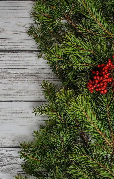 Background Backdrop Christmas Free Photo On Pixabay