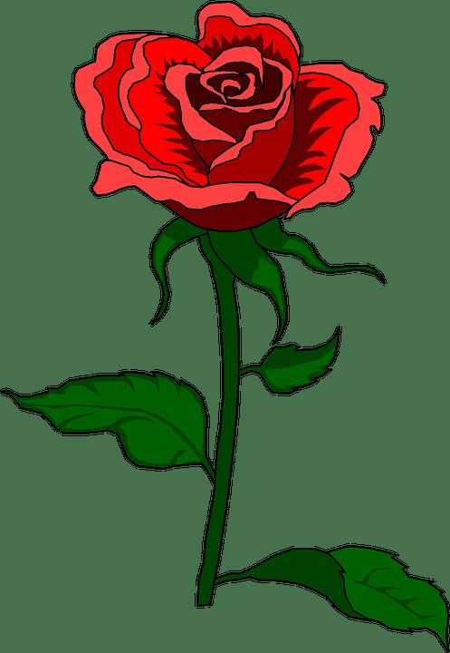 rose vintage clip art free