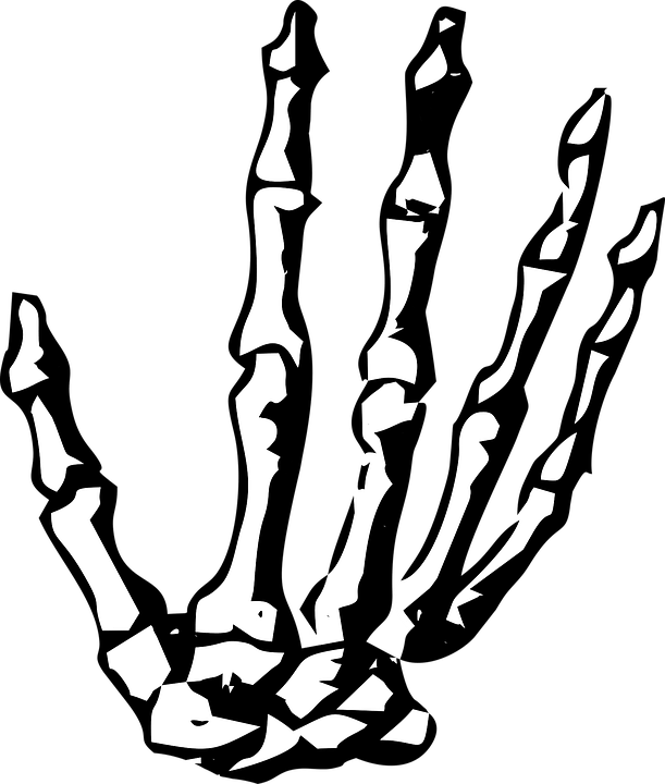 Image Royalty Free Download Skeleton Halloween
