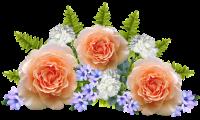 Flowers Arrangement  Free photo on Pixabay