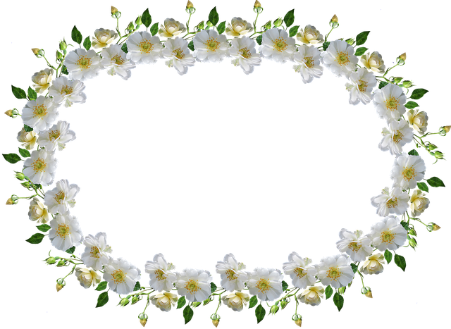 Frame Border White Rose Free Photo On Pixabay