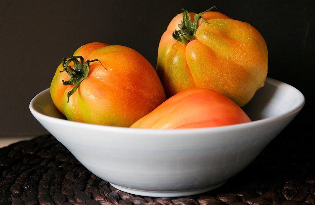 pomodori appena colti nell'orto