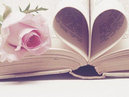 Literature, Book Bindings, Page, Book