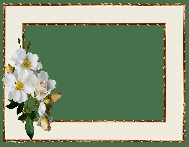 Frame Gold Edge White  Free photo on Pixabay