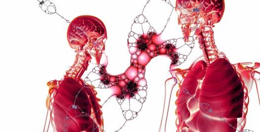 Cella, Divisione Cellulare, Membrana Cellulare