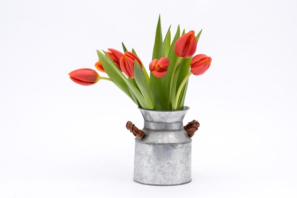 Tulip Bouquet Flower Free Photo On Pixabay