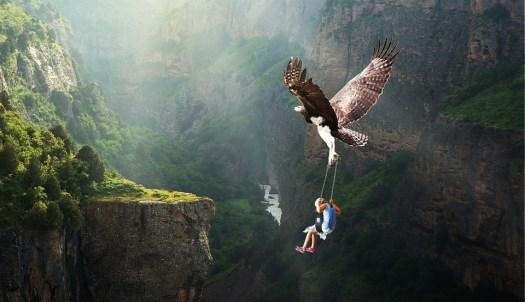 Natura, Acque, Volante, Avventura, Adler, Fantasia