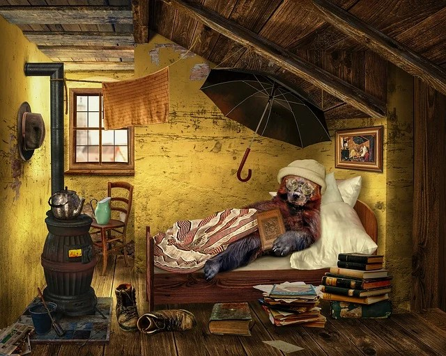 Bear Attic Room  Free photo on Pixabay
