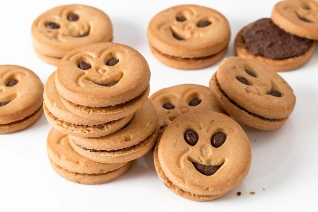Cookie, Biscuit, Round, Sweet, Snack, Carbohydrate
