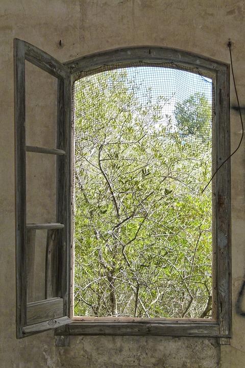 fenetre bois maison vieux mur abandonne ruine