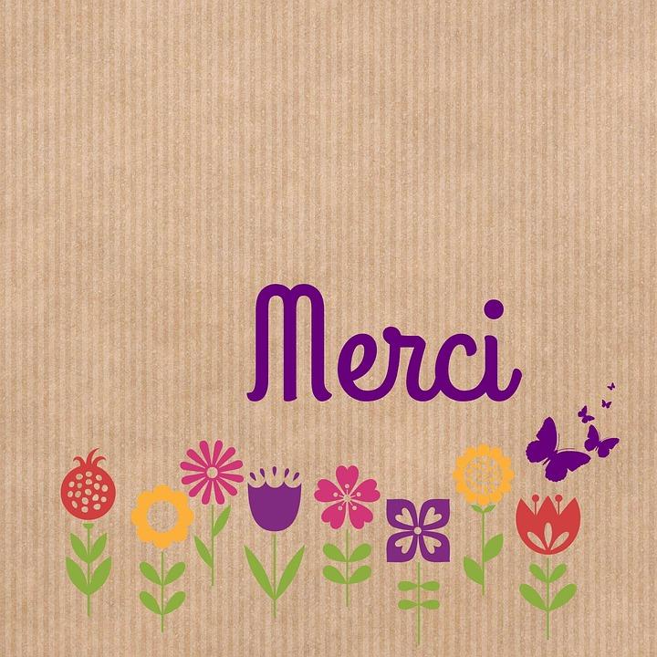 Vielen Dank Stilisierte Blumen  Kostenloses Foto auf Pixabay
