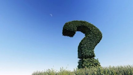 Fragezeichen, Wissen, Frage, Anmelden + Kreditberater.