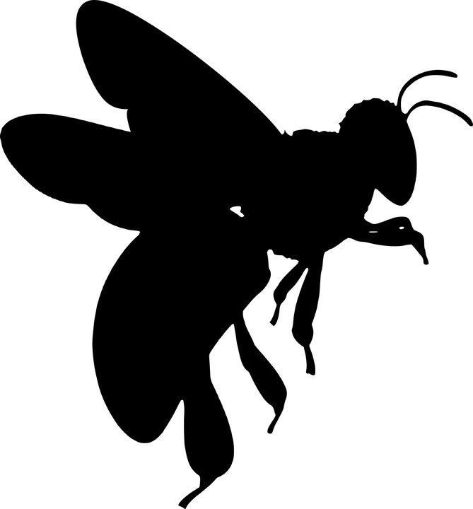 Silhouette Bee Wings Free Vector Graphic On Pixabay