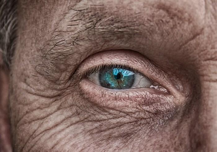 Haut, Auge, Iris, Blau, Älter, Falten, Faltige Haut