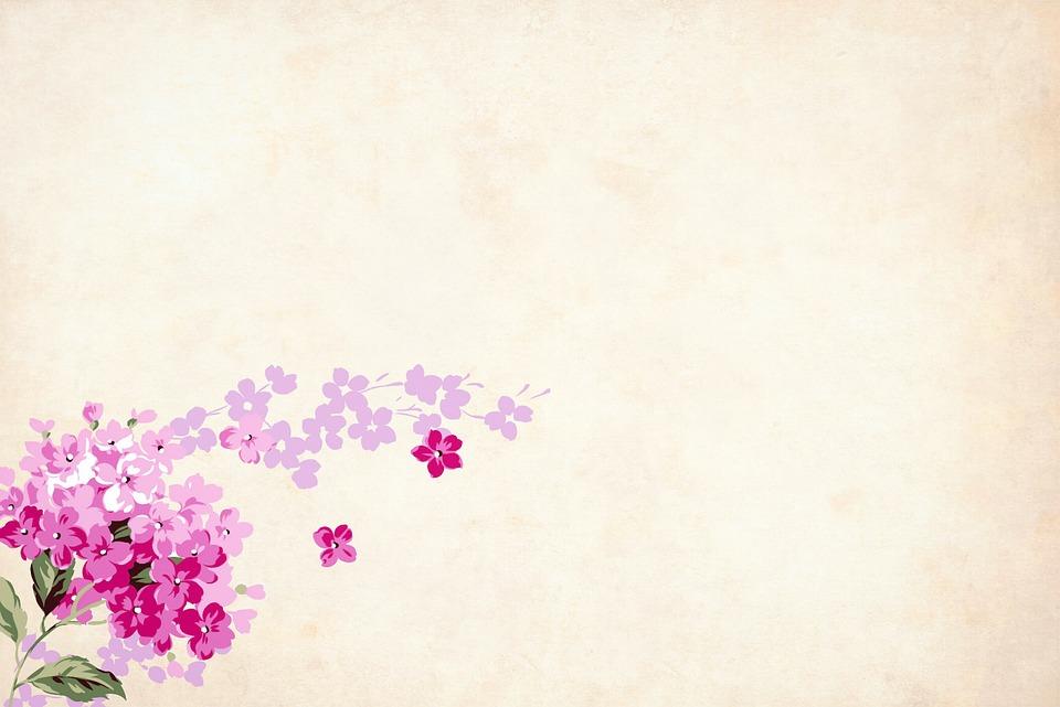 Flower Floral Background  Free image on Pixabay