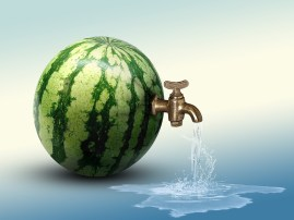 Watermelon, Water, Hydration, Summer, Tap, Blue