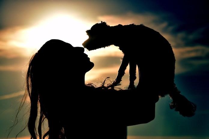 Puesta Del Sol, Con Luz De Fondo, Silueta, Sun, Humanos