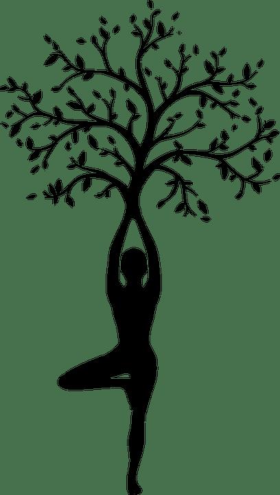 silhouette women tree free