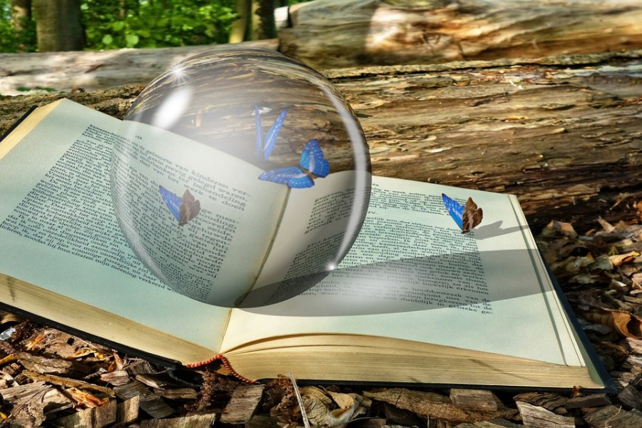 Crystal, Crystal Ball, Book, Butterflies, Beetle, Bug