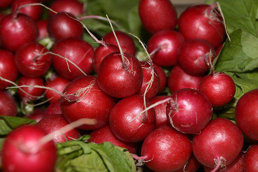 Radishes, Vegetables, Healthy, Food