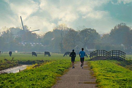 人, 运行, 路, 景观, 草, 荷兰, 磨机, 树, 桥, 圩田