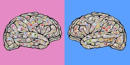Mindsets, Experiences, Gender