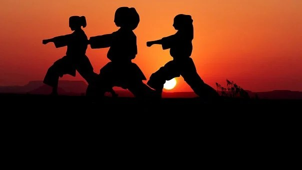 Girl And Boy Shadow Wallpaper Karate Images Pixabay Download Free Pictures