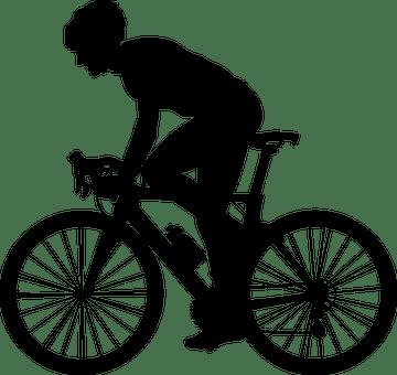 300 Free Bike  Bicycle Vectors  Pixabay