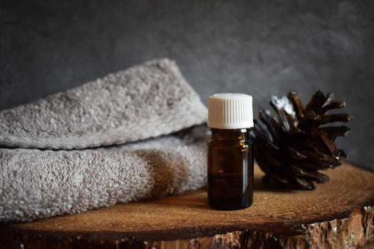 Albero, L'Olio Essenziale Di, Pigna, Aromaterapia