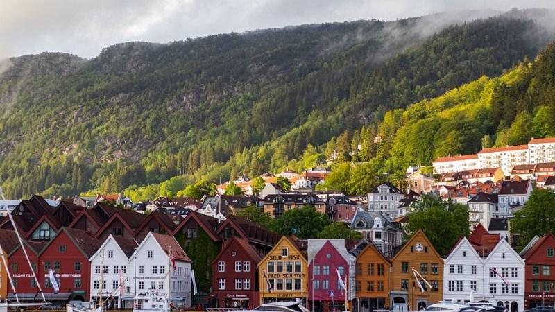 Noruega prohibir deforestación