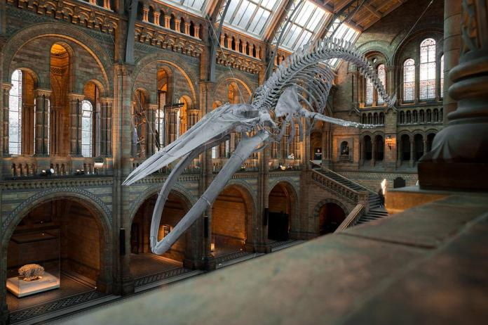 visite virtuali musei