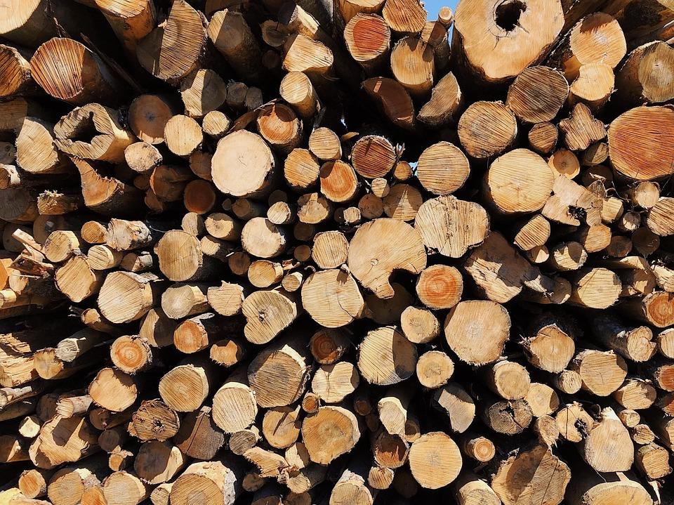 logs logging wood free