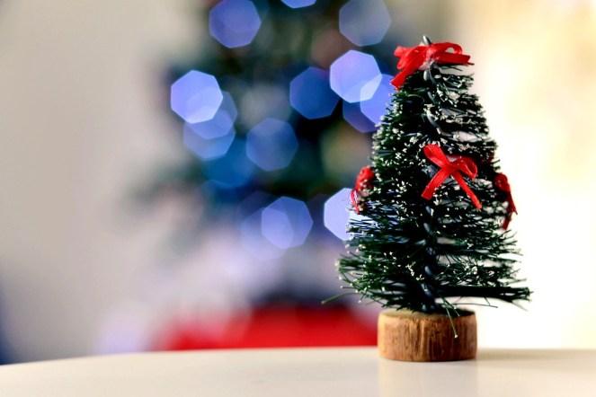 Natal, Árvore De Natal, Bokeh, Xmas, Natal, Macro