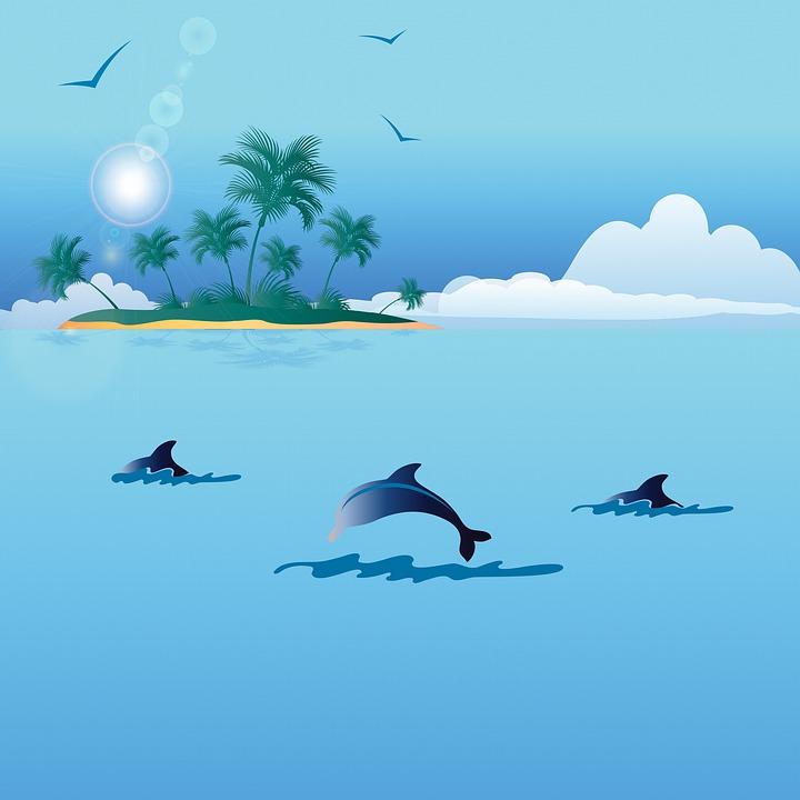 paysage de mer dauphins ile image